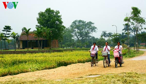Ancient village at harvest time