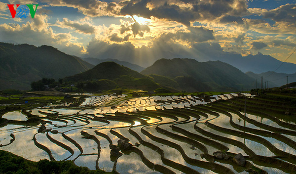 Picturesque rice terraces in northern highlands