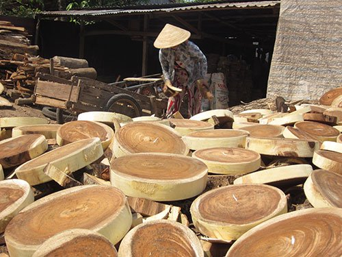 Hardship and dexterity at Dinh An chopping-board craft village