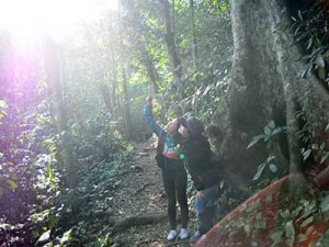 Trekking in Cuc Phuong Nationalpark