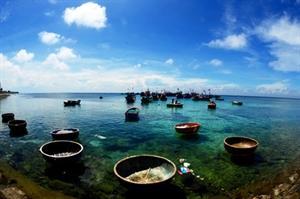 Quang Ngai, sea tourism proves successful