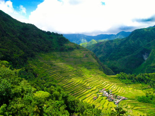 Terraced paddy fields Banaue in the Philippines