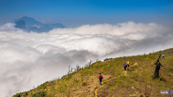 Wandern in den Wolken von Lao Cai Provinz-8