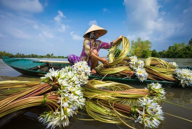 湄公河三角洲地区的生物仙境 (照片: 纳姆·霍 / 通过smithsonianmag.com)