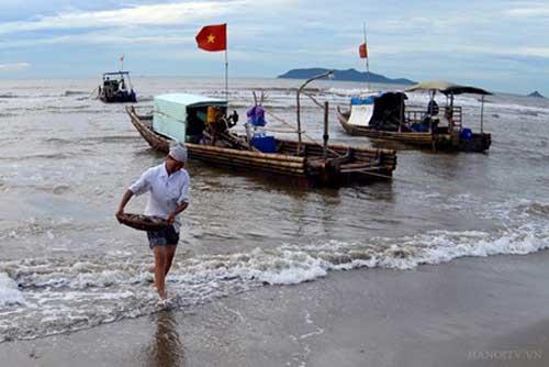 Hai Hoa Beach Fish Market-5