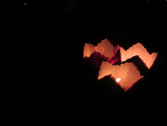 Hoi An ancient town shines on full-moon day-16