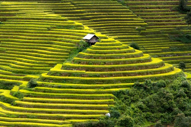 Mu Cang Chai terraced fields-02