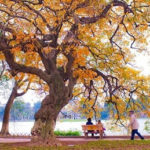 autumn-offers-great-trips-to-travellers