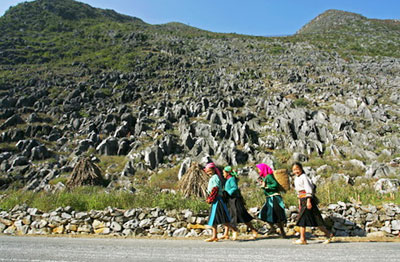 Dong Van Plateau to benefit from international tourist plan