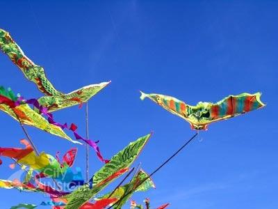 Kites set to fly in Da Nang city