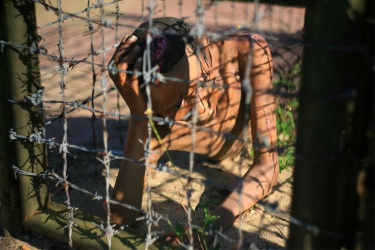 卫兵发明使用虎笼惩罚残酷的形式 - 就像在夜间囚犯泼冷水, 浇海水注入在炎热的日子近老虎笼子或生火.
