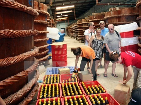 vietnam-to-welcome-10-millionth-foreign-visitor-in-2016